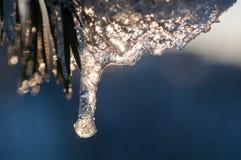 Лед Стоковые Изображения RF