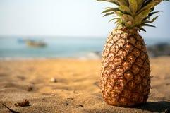 Лежать ананаса близкий поднимающий вверх на песчаном пляже против Стоковые Изображения