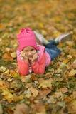 Лежать на gir листьев Стоковое фото RF