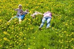 лежать травы семьи счастливый стоковая фотография rf