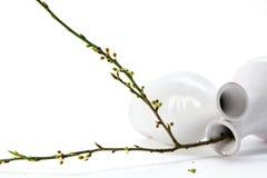 Лежа белая керамическая ваза 2 с ветвью весны, на w Стоковая Фотография