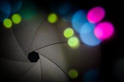 Лезвия штарки Стоковая Фотография RF