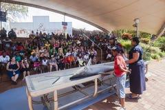 Лекция по доски акул общественная   Стоковые Фотографии RF