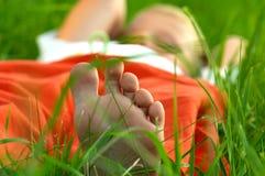 Ленивые зеленые дни Стоковые Фото