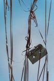 Лента звукозаписи на сини стоковые фото