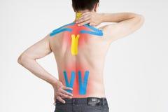 Лента Kinesio, запись на ленту kinesiology на задней части человека Стоковое фото RF