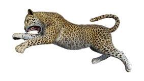 леопард большой кошки перевода 3D на белизне Стоковое Изображение