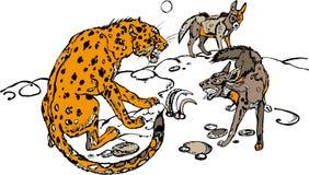 Леопард и гиена Стоковое Изображение