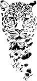 Леопард Стоковые Фото