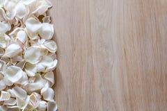 Лепестки белой розы на деревянной предпосылке с космосом для вашего текста Стоковое фото RF