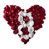 Лепестки в форме сердца Номера для календаря стоковые изображения