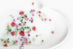 Лепестки и листья цветка смешивания в ванне молока, предпосылке или текстуре для массажа и курорта, ослабляют стоковые изображения