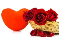 Лепестки красных роз на белой предпосылке Стоковое фото RF