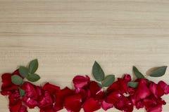 лепестки красных роз рамки на деревянном стоковые фотографии rf