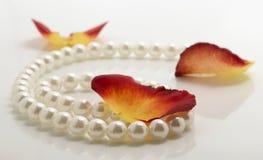 лепестки перлы Стоковые Фото