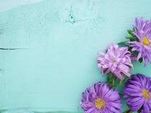 Лепестки разбросанные на таблицу Яркие цветы стоковые изображения