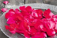 Лепестки розы лежат на плите на старых темных деревянных досках стоковое фото