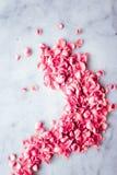 Лепестки розы на мраморном камне, флористической предпосылке стоковое изображение