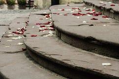 Лепестки розы на шагах Стоковое фото RF