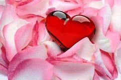 Лепестки розы с сердцем Стоковые Изображения RF