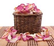 Лепестки розы Стоковое Изображение