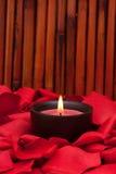 лепестки свечки подняли Стоковые Фотографии RF