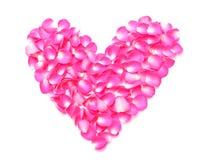 Лепестки сердца розовые Стоковые Изображения RF