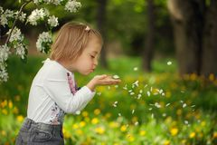 Лепестки цветка девушки дуя в парке на лете стоковое изображение rf