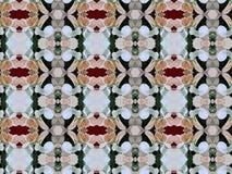 Лепестки цветка Иллюстрация вектора