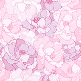 Лепесток цветка Стоковые Изображения RF