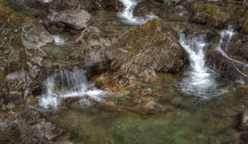 лепеча поток ручейка Стоковая Фотография