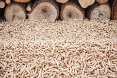Лепешки Biomas Стоковые Изображения