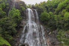 Леса, водопады и потоки, который нужно ослабить стоковое изображение rf