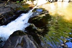 Леса, водопады, природа Стоковые Фотографии RF