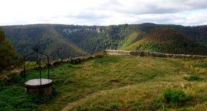 Леса плохого Urach, Германии Стоковые Изображения RF
