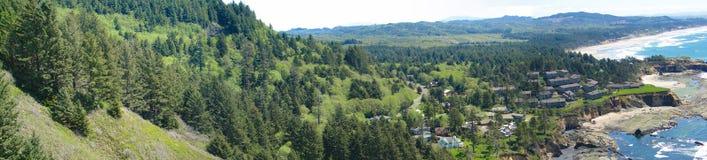 Леса хвои на прибрежных горах Стоковое фото RF