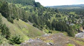Леса хвои на прибрежных горах Стоковое Изображение RF