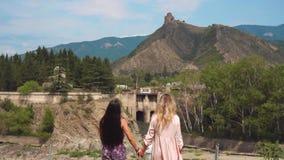 2 лесбиянки друзей держать руки и идти медленно вдоль зеленой травянистой лужайки, любов молодых женщин, отключения  видеоматериал
