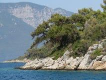 Лесистая скала в море - seascape Стоковое Изображение RF