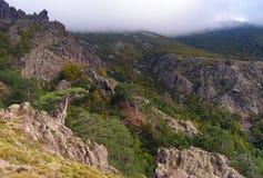 Лесистые горы Корсики в осени Стоковая Фотография RF