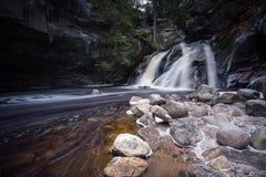Лесистые падения Стоковые Фото