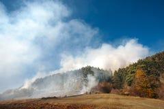 Лесной пожар, бедствие природы стоковые фотографии rf