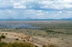 Лесной пожар в африканской саванне стоковое фото