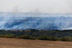 Лесной пожар в зоне Ростова, трава в пламени и перегар Поля в больших огне и дыме стоковые фотографии rf