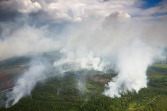Лесной пожар в лесе, виде с воздуха Стоковое фото RF
