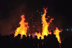 Лесной пожар в ноче стоковые фото