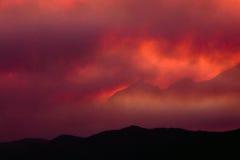 лесной пожар золы горячий стоковые фотографии rf