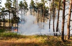 Лесной пожар Используя противопожарную полосу для stoping лесной пожар Стоковое Изображение