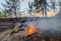 Лесной пожар Используя противопожарную полосу для stoping лесной пожар Стоковая Фотография RF
