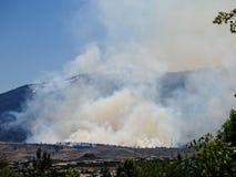 Лесной пожар и дым Стоковое Изображение RF